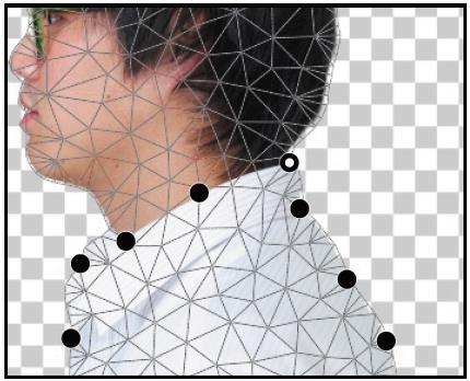 دستکاری یک تصویر با استفاده از Puppet Warp-2