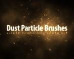 dustبراش